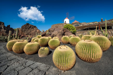 Voyage photo Lanzarote