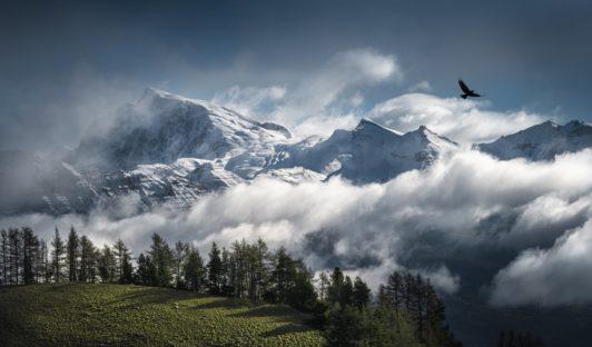 Parc des Écrins, dans les Hautes-Alpes